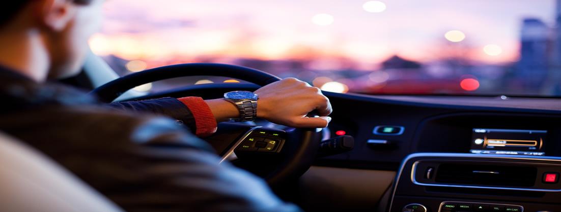 sercicio de coche con conductor