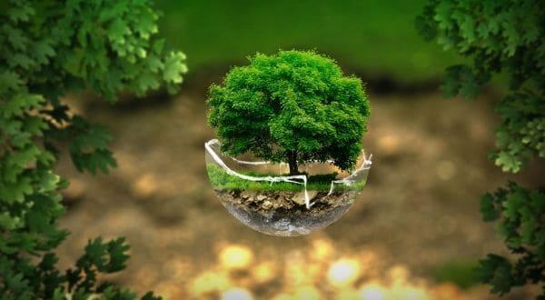 respetuoso con el medio ambiente